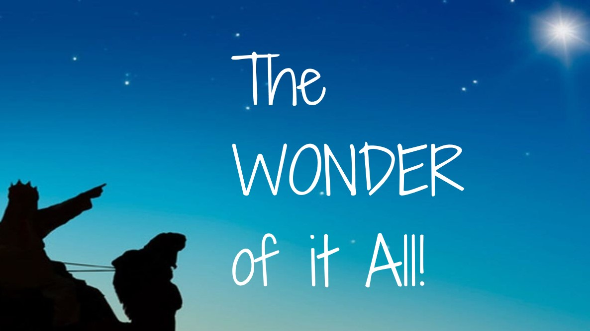 You are currently viewing The WONDER of it All! – December 20th