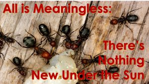 All is Meaningless: There's Nothing New Under the Sun – May 23rd