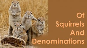 Squirrels and Denominations – June 6th